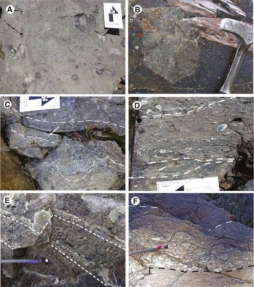 Lithologies of the Oxford Mountain tuffite. (A) Mafic volcaniclastic diamictite. (B) Nonstratified volcaniclastic diamictite with trachyte epiclast (15JK10). (C) Stratified plagioclase-phyric volcanic sandstone and diamictite exhibiting slump folds (13JK10). Dashed white lines mark folded planar beds. (D) Crudely stratified and tectonically stretched volcaniclastic diamictite bearing light-colored, aphanitic, volcanic clasts. (E) Volcaniclastic diamictite with fine-grained green wavy laminations (04JK09, 23JK10, and 16JK10). (F) Above the tuffite lies normally graded breccia, conglomerate, and feldspathic sandstone.