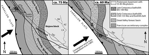 Simplified tectonic reconstruction of southern California at ca. 75 Ma and ca. 60 Ma (modified from Jacobson et al., 2011). Approximately 500 km of sinistral slip on the Nacimiento fault zone may account for the juxtaposition of Salinian block granitoids against Franciscan accretionary complex rocks in the Nacimiento block. The star is San Simeon; NF—Nacimiento fault; SAF—San Andreas fault. Note how the Farallon–North America convergence vector from Engebretson et al. (1985) suggests a sinistral component of slip across the Nacimiento fault zone near San Simeon.