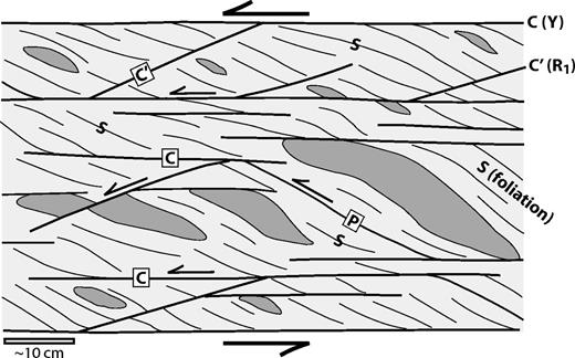 Schematic diagram of an S-C-C′ fabric in a mélange that has undergone sinistral simple shear.