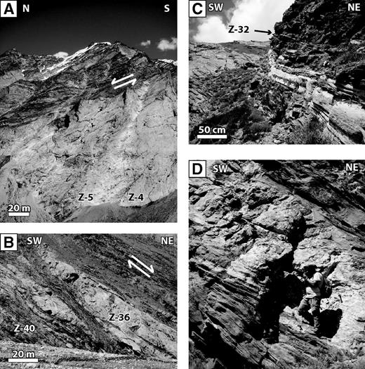 Field photographs from the Zanskar field area. (A) Small leucogranite bodies and migmatite above the Haptal valley pluton across from samples Z-4 and Z-5. (B) Foliated granite intrusions (Z-36) showing pre- to synkinematic emplacement into the surrounding Greater Himalayan Sequence schist (sample Z-40) in Nun-Kun valley. (C) Leucogranite sill in schist in the easternmost part of the Nun-Kun valley (sample Z-32). (D) Granite sill deformed and folded along with surrounding Greater Himalayan Sequence gneiss (34°05′14.7″N, 76°00′32.0″E). The Data Repository contains a color version of this figure (see text footnote 1).