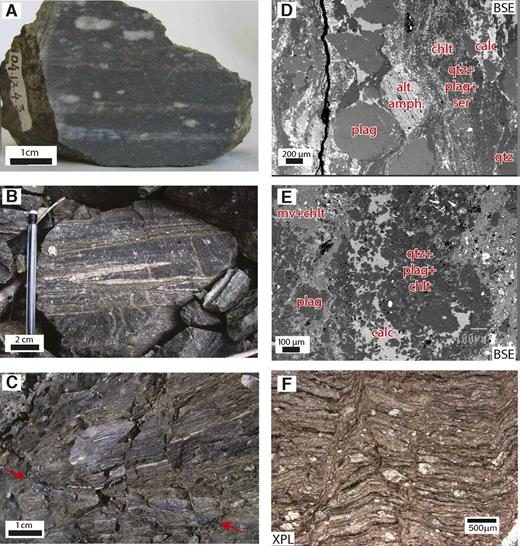 """Photomicrographs and photographs illustrating distinctive mylonitic lithologies not previously described that have correlatives in Deep Fault Drilling Project (DFDP-1) core. Abbreviations for mineral labels follow Whitney and Evans (2010); additionally, alt amph—altered amphibole, XPL—cross-polarized light, BSE—backscattered electron. """"OU"""" sample numbers relate to the University of Otago Geology Department collection's curation system. (A) OU77718: Hand specimen of augen ultramylonite, Harold Creek. (B) Typical outcrop photograph of transitional augen ultramylonite–banded ultramylonite, Harold Creek. Isoclinal folds of pale (feldspar-rich) layers are typical of the latter unit. (C) Green-brown and dark-gray planar foliated ultramylonites in outcrop, Gaunt Creek. Note the fault (between arrows) decorated by darker material than the matrix; this may be ultracataclasite or pseudotachylyte. (D) OU77710: Harold Creek. Typical augen ultramylonite. Feldspar porphyroclasts with pressure shadows composed of calcite and quartz are embedded in a fine matrix of quartz and phyllosilicates. (E) OU77718: Harold Creek. Typical banded ultramylonite. (F) OU77827: Gaunt Creek. Typical green-brown and dark-gray planar foliated ultramylonite. Bands of concentrated opaques tracing subhorizontally across the image are inferred to be solution seams. These are offset by high-angle conjugate microshears."""
