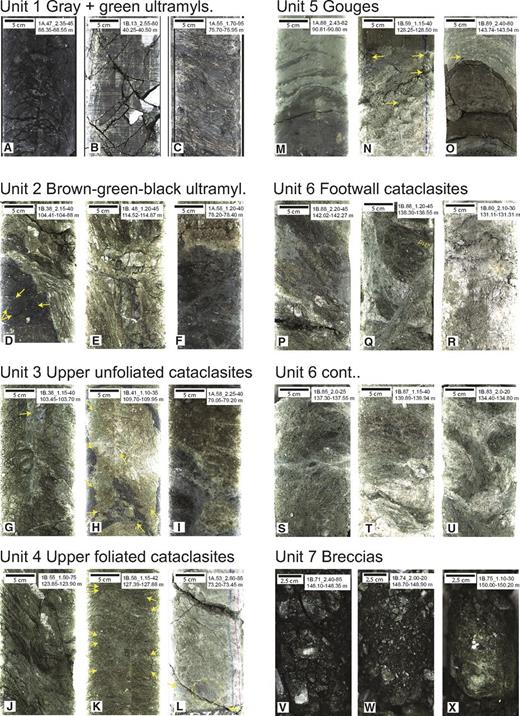 Unrolled 180° scans (5 cm scale bars) or flat scans (2.5 cm scale bars) of core sections illustrating typical structures in each of the lithological units. The various structures observed in each image are indicated in Table A1. Throughout, yellow arrows highlight microfaults. In Q, pst—pseudotachylyte.