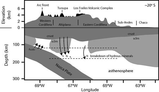 Simplified model showing small-scale removal of lower crust and mantle lithosphere. Breakdown of hydrous minerals during delamination (foundering, removal) within the subcontinental lithospheric mantle (sclm) is proposed to trigger melting and produce the Nb-Ta-Ti–rich magmas. Recent geodynamic models of lithospheric removal suggest much more geodynamic complexity than illustrated here, with possible ductile dripping and partial, piecemeal removal of lower crust and lithosphere (e.g., Göğüş and Pysklywec, 2008; Krystopowicz and Currie, 2013). Depths of hydrous mineral breakdown are not well constrained and likely involve a number of intermediate reactions over variable pressures and depths (e.g., Trønnes, 2002). Crustal and lithospheric depths from Beck and Zandt (2002).
