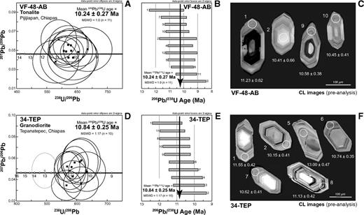 (A, D) Tera-Wasserburg diagram for U-Pb isotope ratios of zircons for samples from the Chiapas Miocene arc. Error ellipses of individual spots are 2σ. (B, E) Zircons used in mean age calculation. (C, F) Cathodoluminescence images of zircons from samples VF48 and 34-TEP, respectively. MSWD—mean square of weighted deviates.