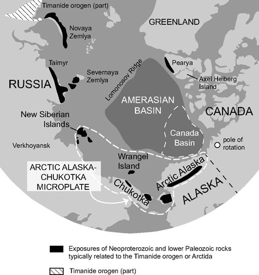 Map of the Arctic region showing the location of the Amerasian and Canada basins and the Arctic Alaska–Chukotka microplate. Also shown are the location of Neoproterozoic and Lower Paleozoic rocks typically related to the Timanide orogen or Arctida (Kuznetsov et al., 2010) and the Timanide orogen itself (Pease, 2011). Location of the pole of rotation is from Grantz et al. (2011).