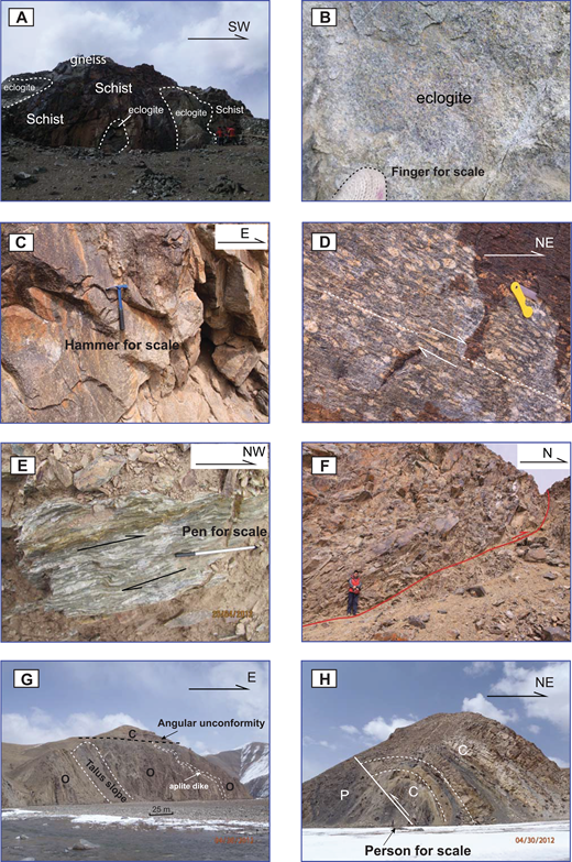 Field photographs and annotations. (A, B) Field occurrence of an eclogite block. (C) Field occurrence of plagiogneiss. (D) Field occurrence of the studied mylonitic orthogneiss sample. Photo shows a right-slip shear in the metamorphic unit. (E) Field occurrence of plagiogneiss showing a right-slip shear zone in this metamorphic unit. (F) Field occurrence of the metaporphyritic diorite sample. The fault shows top-to-the-north displacements with downdip stretching lineations. (G) Angular unconformity between nearly horizontal Carboniferous rocks and vertically foliated Ordovician rocks below. (H) Hanging-wall anticline above fault f4a.