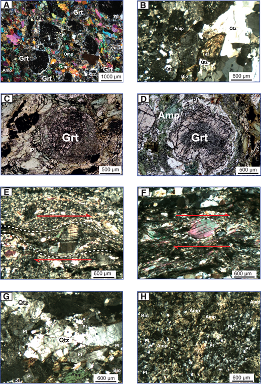 Photomicrographs of representative petrographic characteristics and mineral assemblages of representative metamorphic rocks from the central Qilian Shan. (A) The eclogite block. (B) Metaporphyritic diorite sample. (C) Garnet is surrounded by wormlike intergrowths of the eclogite sample. (D) Metasomatism developed between garnets and plagioclase-amphibole aggregates. (E) Foliations in an S-C tectonite of the studied mylonitic orthogneiss sample. (F) The S-foliation of the studied mylonitic orthogneiss sample is defined by the preferred orientation of large mica grains, called mica porphyroclasts (or fish), and by a grain-shape foliation in the quartz. (G) Plagiogneiss sample. (H) Plagioclase amphibolites sample. Grt—garnet; Amp—amphibole; Pl—plagioclase; Qtz—quartz; Bio—biotite; omp—omphacite; Kf—potassium feldspar.