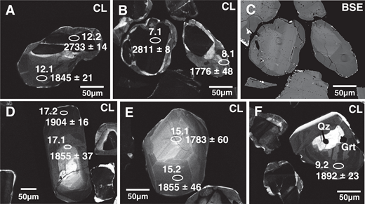 (A–F) Representative cathodoluminescence (CL) and backscattered electron (BSE) images of dated zircon crystals in sample RPB3A. The analyzed spots are shown with their 207Pb/206Pb ages and spot numbers. Abbreviations as in Figure 3.