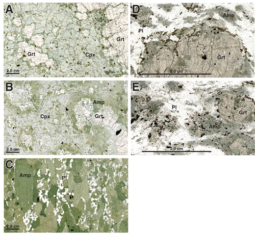Photomicrographs of eclogite and orthogneiss samples from Wairaki Island, Fiordland, New Zealand. (A) Eclogite with narrow rims of amphibole around garnet (Grt), sample 12NZ01a. Cpx—clinopyroxene. (B) Retrogressed eclogite with coronas of amphibole (Amp) + plagioclase symplectite and outer rims of amphibole around garnet, sample 12NZ01e. (C) Amphibolite produced by complete retrogression of eclogite, sample 12NZ01c. Pl—plagioclase. (D) Garnet granulite with pyroxene, amphibole, and biotite, sample 13NZ29c. (E) Granulite with garnet partly reacted to amphibole and biotite, 13NZ29a.