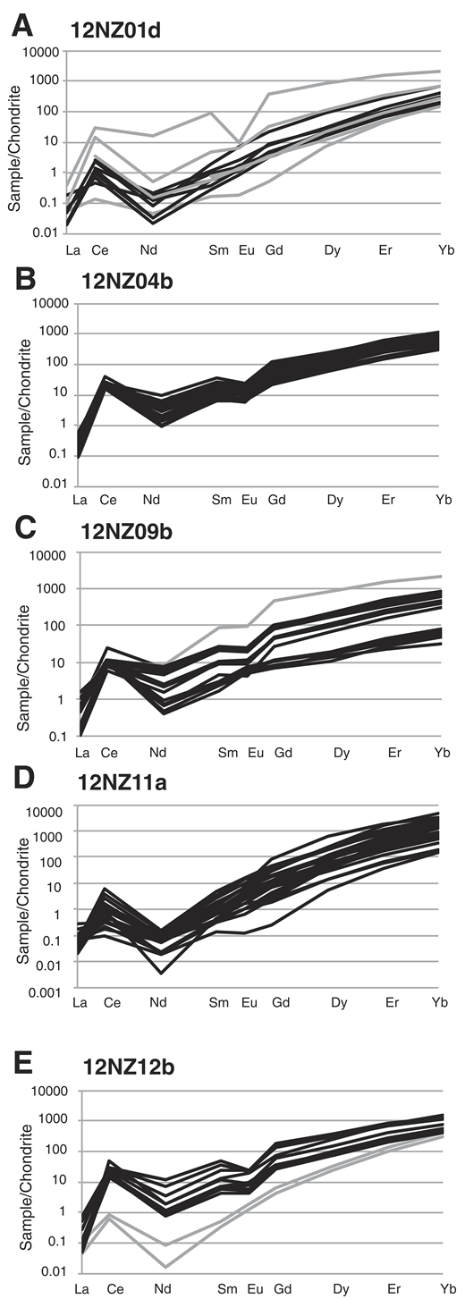 Rare earth element (REE)/chondrite plots for zircon from eclogite and granulite samples, Breaksea Sound area, Fiordland, New Zealand. All zircon analyzed have steep positive heavy REE/chondrite, compatible with zircon growth without garnet. (A) 12NZ01d. (B) 12NZ04b. (C) 12NZ09b. (D) 12NZ11a. (E) 12NZ12b. REE values are normalized to chondrite values in Sun and McDonough (1989).