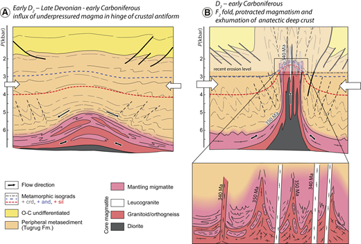 Idealized model of origin and evolution of the Chandman massif. (A) Initial stage showing onset of shortening in upper crustal levels and influx of partially molten crust into future fold core (similar to initiation of detachment fold of Bonini, 2003, see fig. 12 therein). Abbreviations: crd—cordierite; and—andalusite; sil—sillimanite; O-C—Ordovician–Carboniferous. (B) Final structure of the granite-migmatite dome characterized by vertically extruded partially molten crust and its juxtaposition to upper crustal rocks. Lower inset shows cuspate-lobate geometry of migmatite and granitoid interface developed ca. 350 Ma, and crosscut by leucogranite dikes ca. 340 Ma.