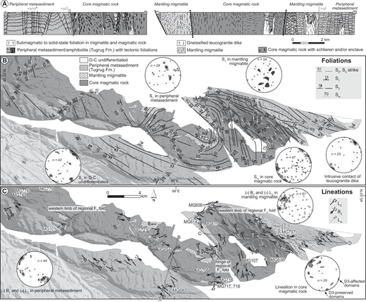 (A) Structural profile across the Chandman massif (location in C). The legend for nature of contacts between different units is in Figure 4. (B) Structural map of foliations. The map of S2 and steep Sm2 foliation trends are from field measurements combined with Landsat image analysis. Note the D3 kilometer-scale F3 regional fold. O-C—Ordovician–Carboniferous. (C) Structural map of lineations. The locations of field photographs shown in Figures 3, 6, 7, 8, and 9 are indicated. Stereonets show lineations and poles of foliations. Magmatic foliation Sm, composite bedding-early metamorphic foliation S1, intrusive contact of leucogranite dike, magmatic lineation Lm, mineral lineation L2, and F2 fold axis B2 are indicated. All stereographic projections are equal-area lower hemisphere projection.