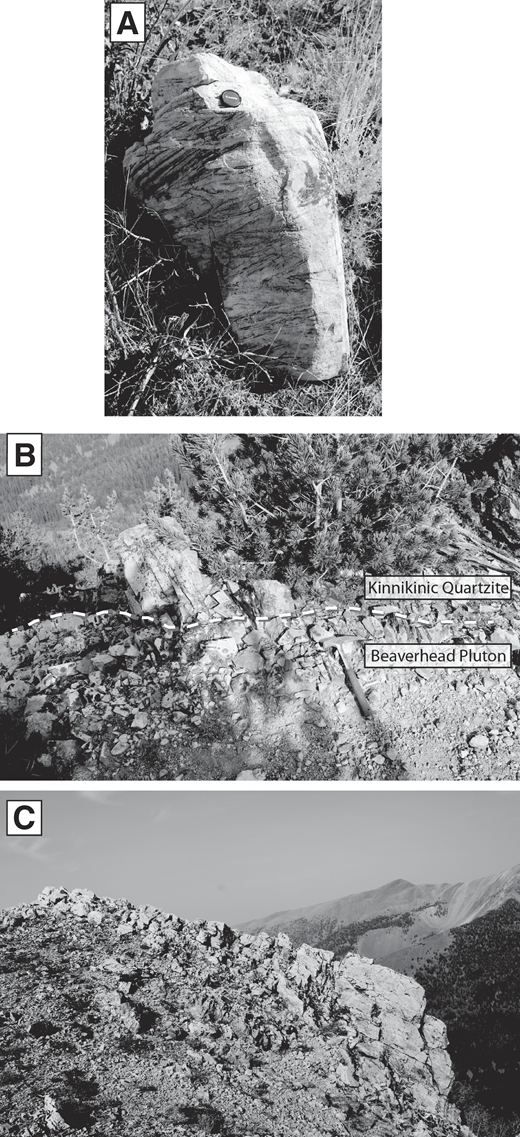 (A) Outcrop photograph of planar cross-bedded fine sandstone of the second siliciclastic layer—Worm Creek Quartzite, Midnight Creek location (MC in Fig. 1). Diameter of lens cap is 3 cm. (B) Outcrop photograph of the unconformable contact (dashed line) between the Late Cambrian Beaverhead pluton and the Ordovician Kinnikinic Quartzite; 18 Mile Creek, west side Beaverhead Mountains; east-central Idaho. Width of field of view is 2 m. (C) Bedded Kinnikinic Quartzite along ridge south of 18 Mile Creek, near Beaverhead pluton sample location. Photographs by M.K. Todt. Width of field of view is 100 m.
