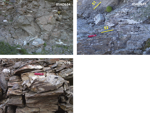 (A–C) Photographs of Healy schist quartzite from which our samples were collected showing characteristic folding and fabric development within the unit. We interpret the fabrics shown in B to represent two deformation events (D1 and D2). Locations of sample field number (in upper right of photographs) are shown in Figure 3.