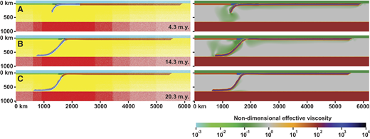 Model results showing three evolutionary stages of numerical subduction model B with a relatively strong core layer (C = 382.2 MPa), which does not develop slab detachment. (A) Early stage of the initial transient subduction phase (4.3 m.y.). (B) Early phase of continental subduction (14.3 m.y.). (C) Very late stage of continental subduction phase (20.3 m.y.), when subducting plate velocity is close to zero. Images on the left show the different domains in the model, while images on the right show the nondimensional effective viscosity field.