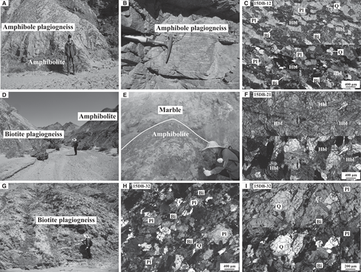 Field photographs and photomicrographs of the studied metaigneous rocks in the Duobagou area. (A) Field relationship of amphibole plagiogneiss and amphibolite. (B, C) Amphibole plagiogneiss showing well-developed foliation. (D, E) Typical field occurrence of amphibolite. (F) Amphibolite, composed almost exclusively of hornblendes. (G) Field occurrence of biotite plagiogneiss. (H, I) Biotite plagiogneiss consisting mainly of plagioclase, biotite, and quartz. Abbreviations: Hbl—hornblende; Bi—biotite; Q—quartz; Pl—plagioclase.