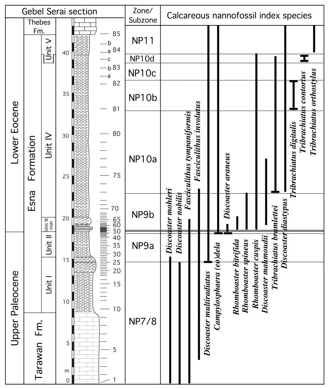 Calcareous Nannofossils Of The Paleocene Eocene Transition At Qena