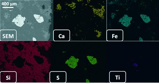 Elemental maps by SEM EDX derived from the polished thin section of the ortho-slice showing the SEM electron back-scattered image and maps for Ca, Fe, Si, S and Ti.