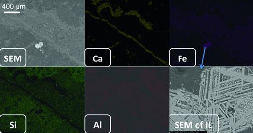 Elemental maps by SEM EDX of the polished section of the ortho-slice showing the SEM electron back-scattered image, maps for Ca, Fe, S and a backscatter image of ilmenite exsolution lamellae (SEM IL).