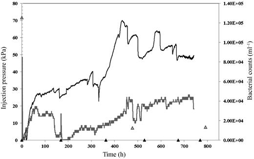 Comparison of the injection pressure profiles and bacterial counts for the two rock types under control conditions. To enable comparison, only the first ~800 h after the start of data logging of sandstone experiment is shown. The mudstone pressure and bacterial counts are shown by a black line and open triangles, respectively. The sandstone pressure and bacterial counts are shown by a grey line and open triangles, respectively.