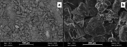 "(a) A BSEM image (from VPSEM) of mudstone starting material showing fine silt particles accumulated within the channel formed by the ""ridge and furrow"" lineaments on the fracture surface. (b) A SEM image of sandstone starting material showing euhedral authigenic K-feldspar and quartz overgrowth cements with some illite–smectite clay coating on detrital quartz grains (courtesy of A. E. Milodowski, BGS)."