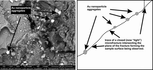 A combined SE and BSE image showing a trail of aggregated gold nanoparticles trapped within the trace of a now closed pathway. The Au particles are trapped along what appears to be a healed pathway that is sub-orthogonal to the plane of the fracture surface imaged in Fig 3a,b. The pathway in Fig. 5 appears to have collapsed, encasing the gold particles after they were injected. The gold particle aggregates are clearly much larger in diameter than the width of the pathway trace, providing conclusive evidence for the existence of dilatant pathways. These features must be at least equal in aperture to the size of the gold aggregates otherwise penetration of the clay would not have occurred.