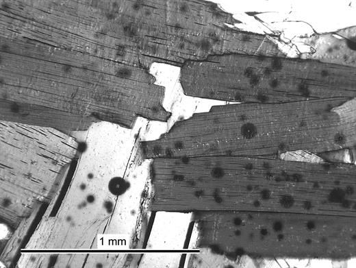 Radiation damage haloes showing as dark circles surrounding monazite inclusions (lighter centres) in biotite (darker, cleaved phase) in a 1.8 Ga meta-ironstone from Tunaberg, Sweden (optical image in plane polarized light).