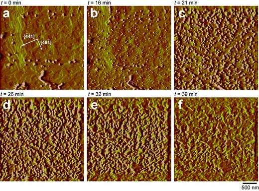 AFM contact-mode deflection images of a {101İ4} dolomite cleavage surface reacting in the presence of flowing water at pH 3. (a) The flat surface after first contact with acidified water when a precipitate immediately starts to form; (a–b) development of characteristic rhombohedral etch pits formed on the surface. The etch pits (crystallographic directions are marked on part a) nucleate and then spread progressively until a whole unit-cell layer (~3.0 Å) of dolomite is removed. Simultaneously, precipitates are seen (a–e) nucleating and growing on the surface until the whole surface is almost covered (f) with a Mg-carbonate layer. The times are indicated on the images and can be related to the plot of Ca and Mg release in Fig. 2. Image reproduced from Urosevic et al. (2012) with permission from Elsevier, license number: 3451340385562.
