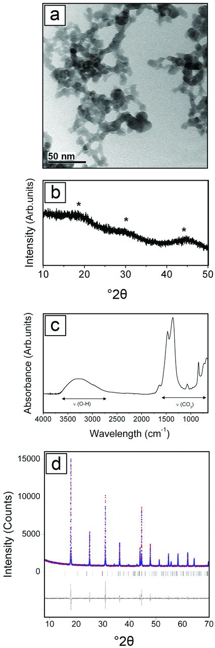 (a) TEM image of the initial precursor showing spherical nanoparticles with diameters of between 10 and 20 nm; (b) XRD pattern of the gel-like precursor showing its amorphous character; (c) FTIR profile of the precursor showing bands corresponding to water and carbonate vibrations; and (d) pattern-matching refinement of the XRD pattern of the final end product indexed as hexagonal NdCO3(OH).