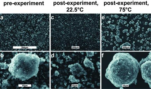 SEM images of the initial hydromagnesite seed material (a,b), after the precipitation experiment at 22.5°C at pH 10.72 (c,d), and after the experiment performed at 75°C at pH 9.75 (e,f).