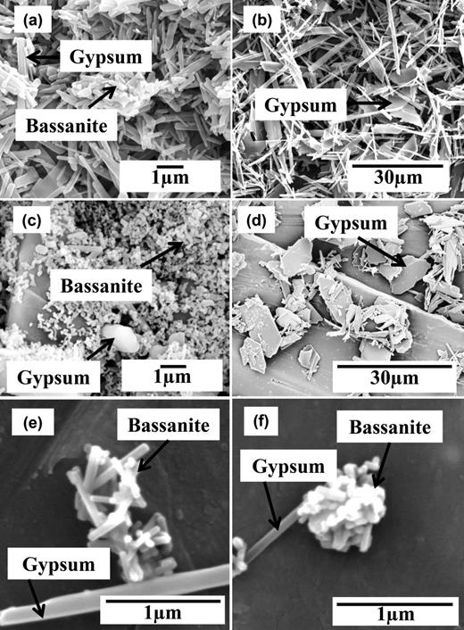 SEM image of precipitated materials from experiments in: (a) the pure CaSO4 system 30 s after turbidity onset showing bassanite nanorods and gypsum needles; (b) the pure CaSO4 system 63 min after turbidity onset (70 minutes total time) showing only variably sized gypsum needles; (c) tiny bassanite nanoparticles formed in the presence of 20 ppm citric acid 3 min after turbidity onset together with some larger gypsum crystals; (d) plate-like gypsum crystals formed in the presence of 20 ppm citric acid after 200 min of total reaction; (e) bassanite nanorods and a single larger gypsum needle collected a few minutes after the onset of turbidity in the 20 ppm maleic acid experiment; (f) bassanite nanorods and a single larger gypsum needle collected a few minutes after the onset of turbidity in the 20 ppm tartaric acid experiment.