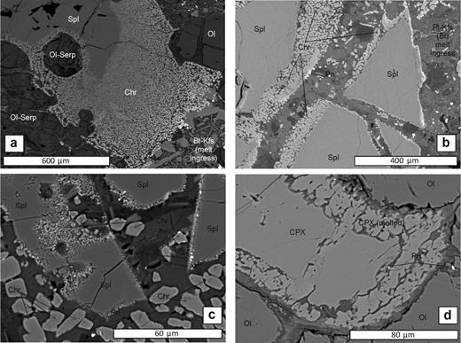 Streap Coml'aidh BSE SEM images. (a) Al-Mg spinel reacting and melting to fine granular chromite at the spinel grain boundary and enclosing granular serpentinized olivine. The lower right hand corner of the image shows ingressed orthoclase and biotite-rich melt, possibly from the host dyke entraining the xenolith (sample 4a1). (b) Al-Mg spinel reacting and melting to chromite. Note the tiny μm-scale rounded pentlandite globules associated with spinel-chromite melting (sample 4a1). (c) Similar to (b) with Al-Mg spinel melting at the rim and forming granular chromite. Note the two crystal size populations of chromite: >5μm granular, sub-euhedral chromite crystals vs. μm-scale rounded chromites. Both chromite populations are associated with μm-scale pentlandite globules at crystal margins (sample 4a1). (d) Protogranular clinopyroxene and olivine. Clinopyroxene is melting to form finger-like crystals at its margins. This melt zone is again associated with μm-scale pentlandite globules (sample 4a1). Mineral abbreviations: clinopyroxene (CPX), orthopyroxene (OPX), olivine (Ol), spinel (Spl), chromite (Chr), serpentine (Serp), pentlandite (Pn),