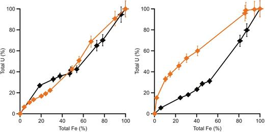 Release of U and total Fe during dissolution of magnetite in 1M HCl in the YCL system (pH 13.1) (left) and OCL system (pH 10.5) (right). Black lines are reduced magnetite experiments, orange lines are oxidized magnetite experiments.