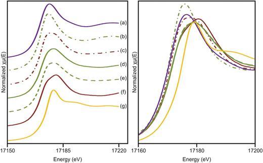 U LIII-edge XANES spectra; (a) uraninite (U(IV) reference); (b) OCL adsorption; (c) YCL adsorption; (d) OCL coprecipitation reduced; (e) OCL coprecipitation oxidized; (f) YCL coprecipitation reduced; (g) schoepite (U(VI) reference).