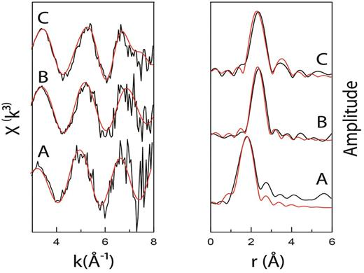 k3 weighted 237Np LIII-edge EXAFS spectra (left) and Fourier transform (right) for: (A) oxic sediments; (B) progressive anoxia no added Fe(III); and (C) progressive anoxia with added Fe(III). The best fit model (red line) overlays the experimental data (black lines). The fit parameters are given in Table 1.
