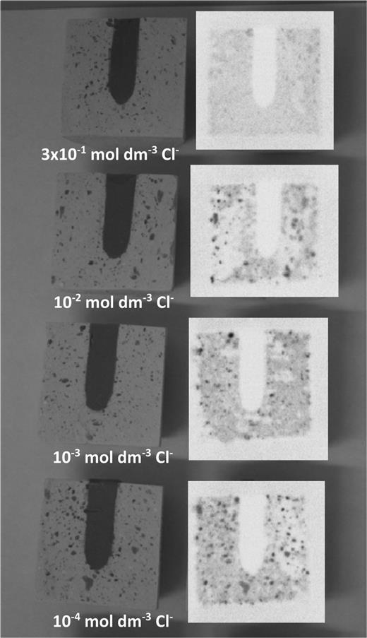 Photographs and autoradiographs of longitudinally sectioned NRVB cylinders without CDP.