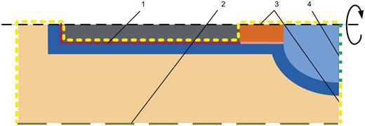 A schematic representation of boundary conditions: (1) hydrogen gas injection area; (2) constant water pressure; (3) no flow boundary conditions; (4) time varying boundary conditions.