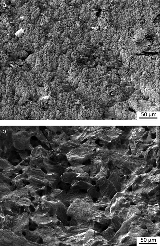 (a) Electron micrograph showing the carbonaceous deposit found on a channel wall face of irradiated graphite. (b) Electron micrograph showing the structure of inner brick (non-channel wall face) of irradiated graphite.