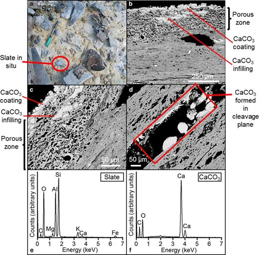 Slate cemented in tufa (a) in situ; (b) in section via SEM exhibiting increased porosity at surface with CaCO3 infilling; (c) higher magnification electron micrograph of increased porosity with CaCO3 infilling; (d) electron micrograph of CaCO3 in slate cleavage plane; (e) EDX spectrum of slate and (f) EDX spectrum of CaCO3.