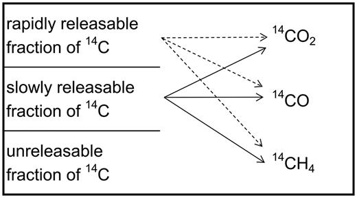 Conceptual model of C-14 release from graphite (adapted from Baston et al., 2014).