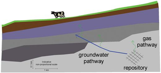 Groundwater and gas pathways in the geosphere.