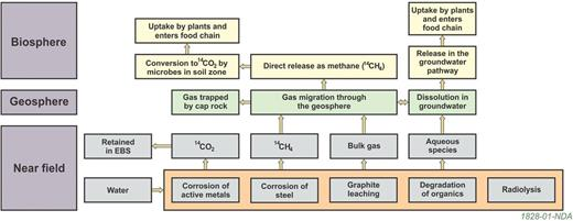 The key processes for the generation and migration of 14C-bearing gases. Figure published with permission of the NDA.