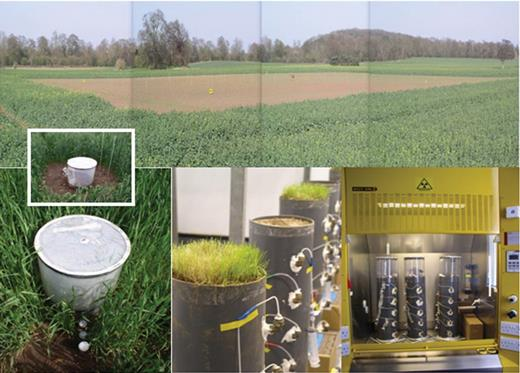Field and laboratory experiments examining the oxidation of methane.