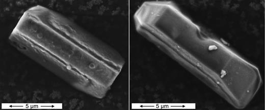 Scanning electron microscopy – secondary electron images of two larger Pb-lawsonite crystals synthesized from PbAl2SiOx(7–8) glass and excess water in a piston cylinder experiment at 600°C and 4 GPa.
