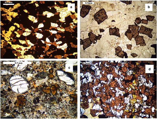 Plane polarized light images of perovskite in: (a) afrikandite, Afrikanda complex, Kola (Russia); (b) uncomphagrite, Iron Hill, Colorado (USA); (c) kimberlite, Pipe 200, Lesotho; (d) perovskite pyroxenite, Tapira complex (Brazil).
