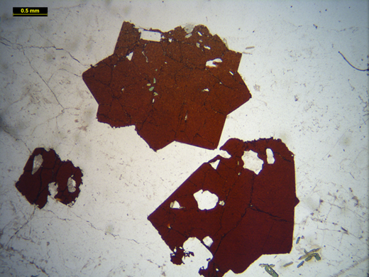 Plane polarized light image of twinned loparite crystals from the type locality, the Khibiny peralkaline complex, Kola (Russia).