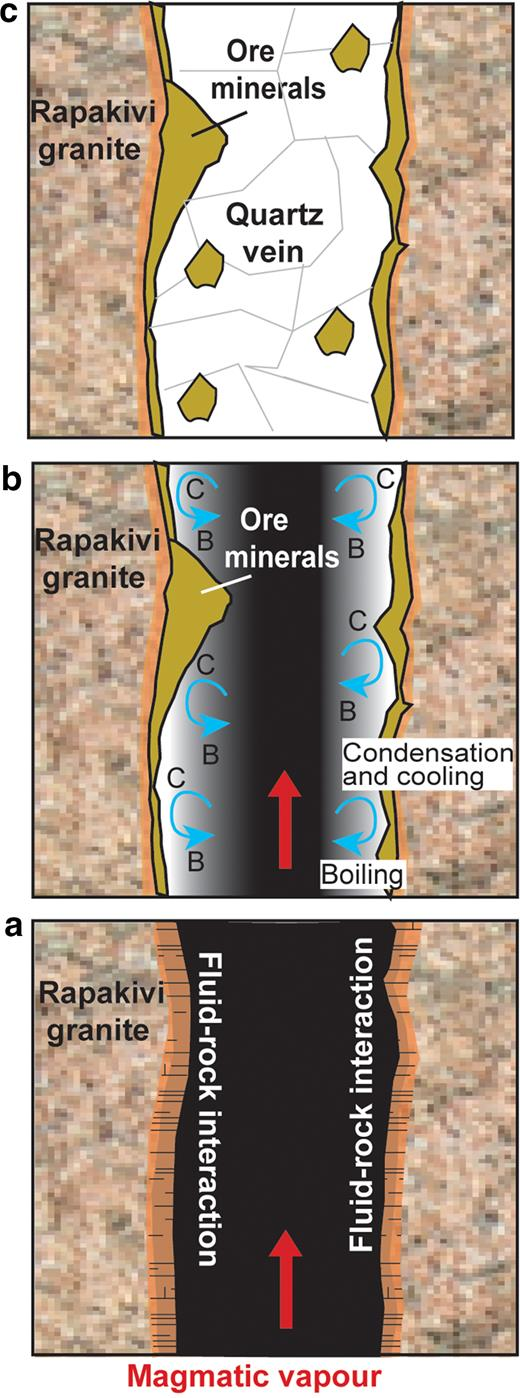 Simplified model for the formation of the Sarvlaxviken polymetallic quartz veins; (a) Vapour exsolved from a magma rises from depth (red arrow), interacts and alters the walls of the fractured wiborgite. (b) Cooling of the ascending hot magmatic vapour along the fracture walls (blue arrows) leads to contact condensation into liquid water, reheating, boiling and subsequent cooling of the liquid phase (C=condensation and cooling, B=boiling) with a progressive increase in concentration of salt and metal components. Ore minerals are deposited. (c) The open fracture is finally filled and sealed by quartz.