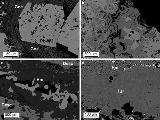 Back-scattered electron (BSE) images of typical supergene minerals: (a) MI29631: goethite (Goe) altering a Pb-bearing willemite 2 (Pb-W2) crystal; (b) OR5314: alternating crusts of hemimorphite (Hm) and smithsonite 2 (Sm2); (c) MI10900: hemimorphite platy crystals in a cavity, followed by pyromorphite (Pyrm) crystals; and (d) OR5314: tarbuttite (Tar) vein in hemimorphite. Desc = descloizite.