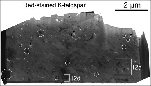 BF-TEM image showing red-stained K-feldspar foil and minerals identified in case study C (K-feldspar, Fe oxide and chlorite). Inclusions of Fe oxides are circled in (a). White squares are locations of areas shown in Fig. 12. Black arrows indicate micropores.