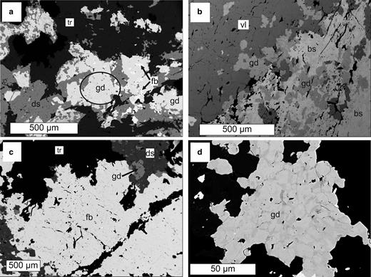 Back-scattered electron images of gadolinite-(Nd) and associated REE minerals from (a–c) Malmkärra and (d) Johannagruvan. gd-gadolinite-(Nd), ds-dollaseite-(Ce), fb-fluorbritholite-(Ce), tr-tremolite, vl-västmanlandite-(Ce), bs-bastnäsite-(Ce). The aggregate from which the crystals for single-crystal X-ray diffraction and optical study were extracted is indicated by an ellipse. The zoning of the gadolinite-(Nd) from Johannagruvan (d) reflects Y-lanthanoids variability; the Y-rich zones are darker.